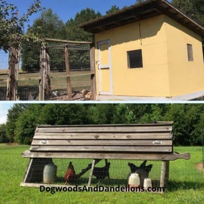 a chicken ark and a permanent chicken coop