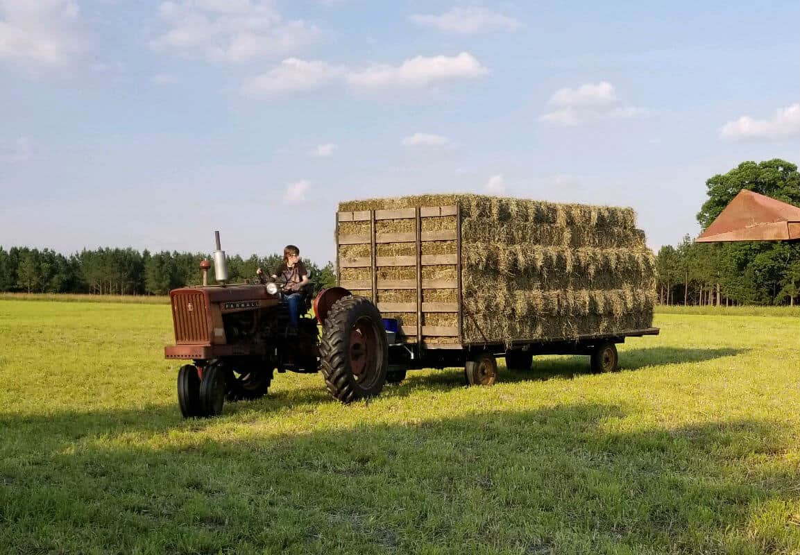 Driving a wagon full of hay