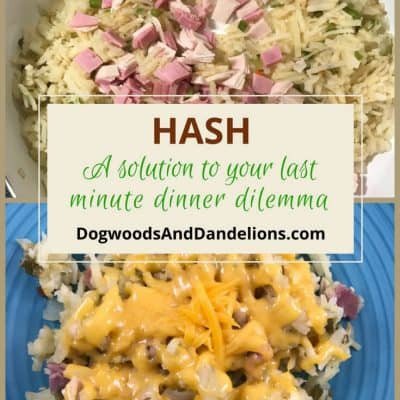 Hash-A solution to your last minute dinner dilemma