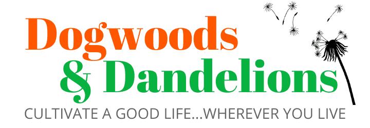Dogwoods & Dandelions