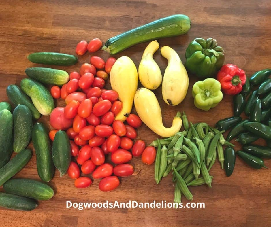 Vegetables for a batch cooking session
