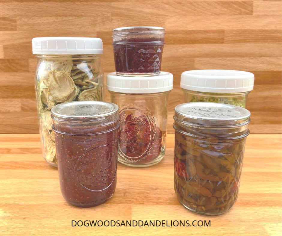 food preserved in jars