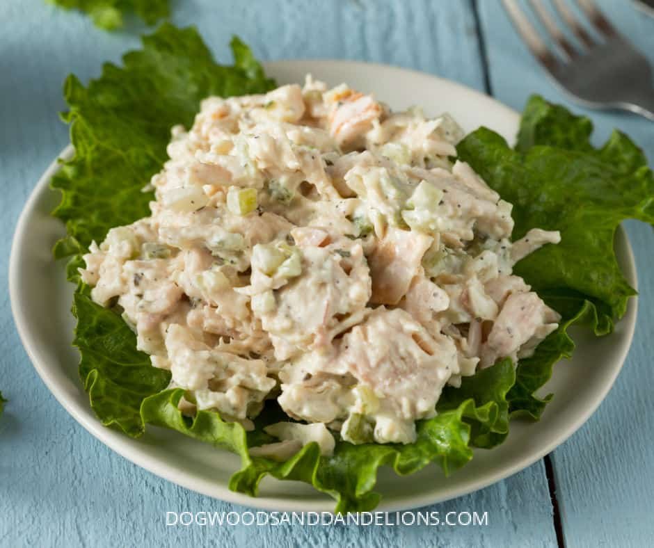easy home lunches for kids includes chicken salad on a bed of lettuce