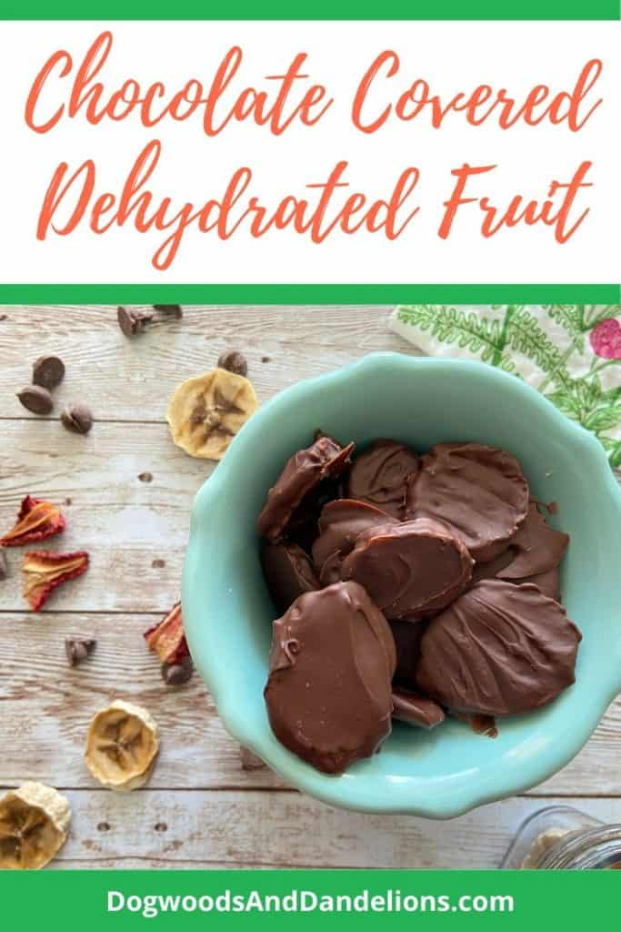 Dehydrated fruit covered in chocolate