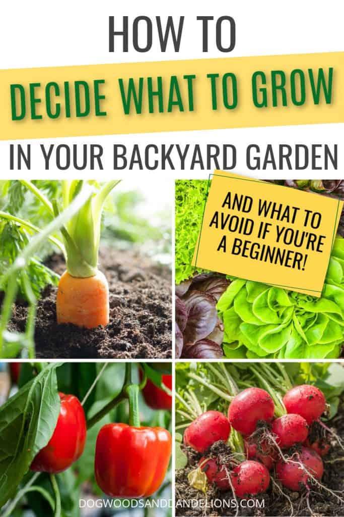 vegetables for your backyard garden