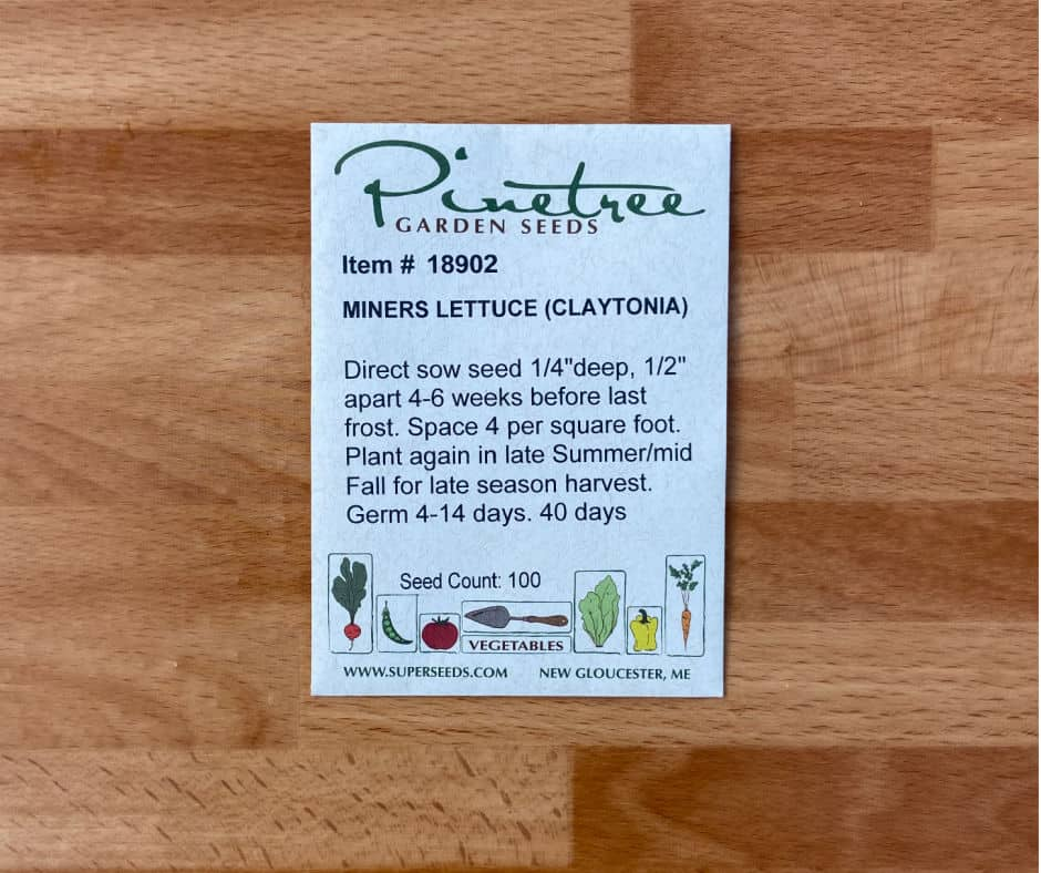 seed packet for fall