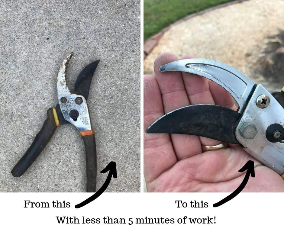 how to clean pruners