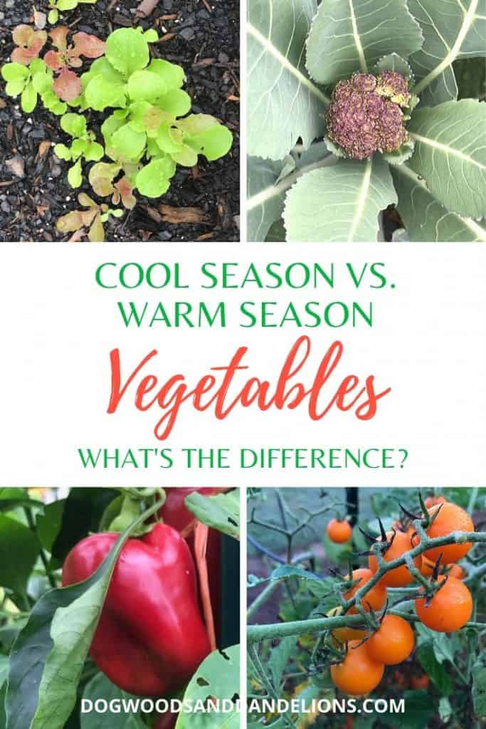 Cool season vs. warm season vegetables