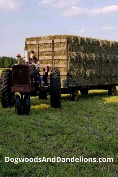 A wagon full of hay.