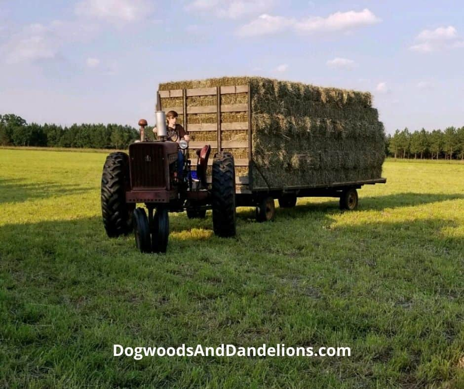 A wagon full of hay.