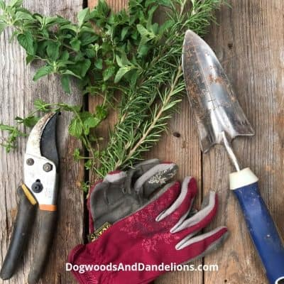 How To Clean Up The Garden In The Fall