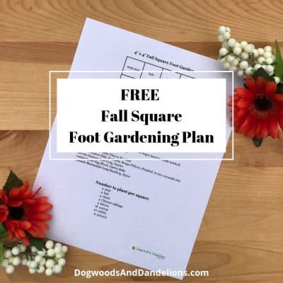 Fall Square Foot Garden Plan
