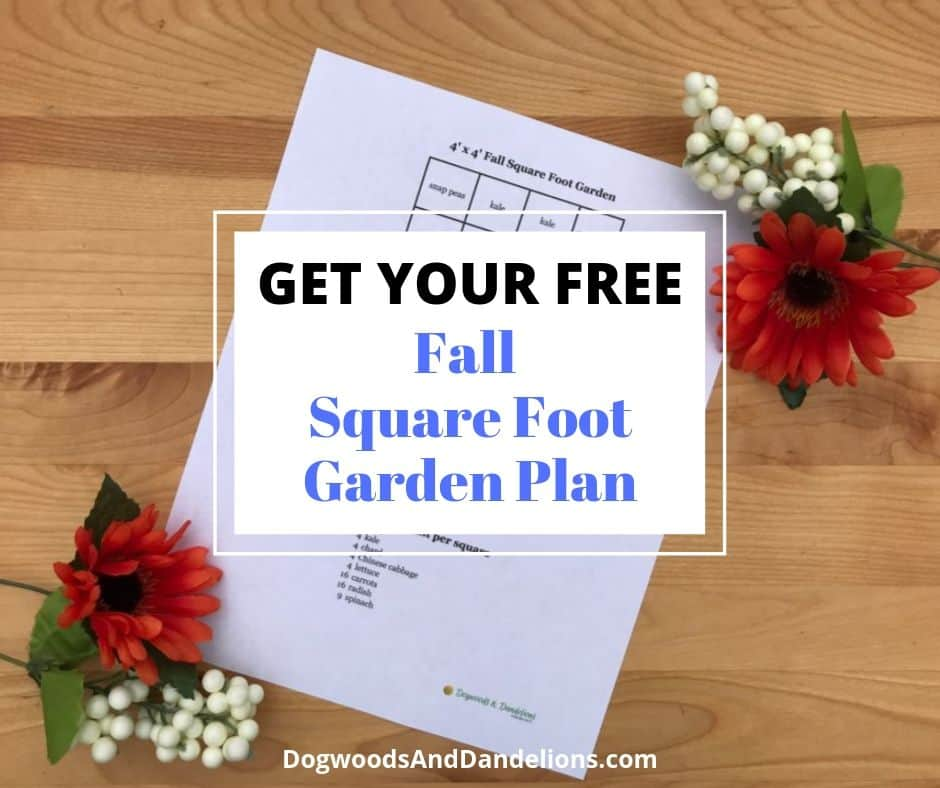 fall square foot garden plan picture