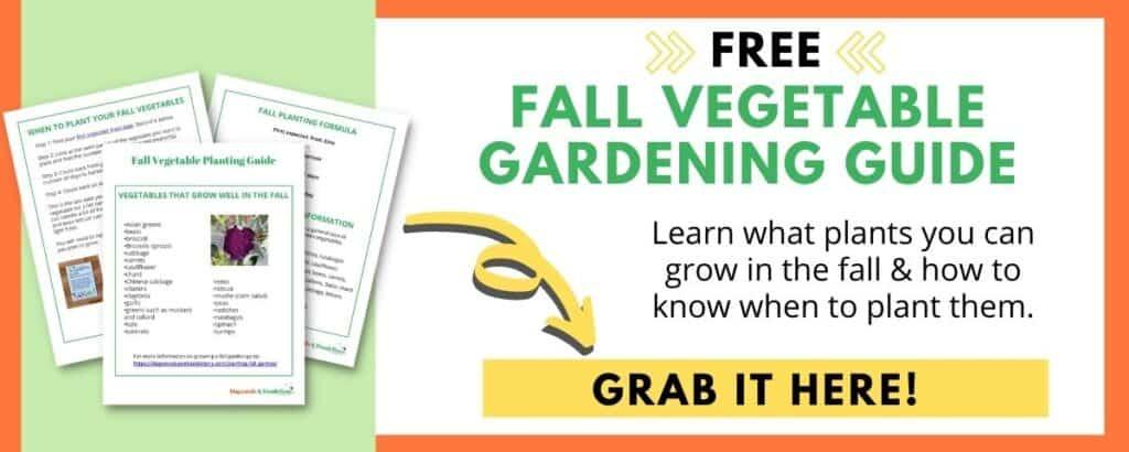 fall garden opt in box