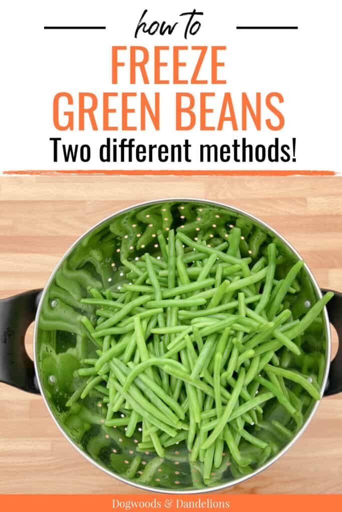 a colander of green beans to freeze