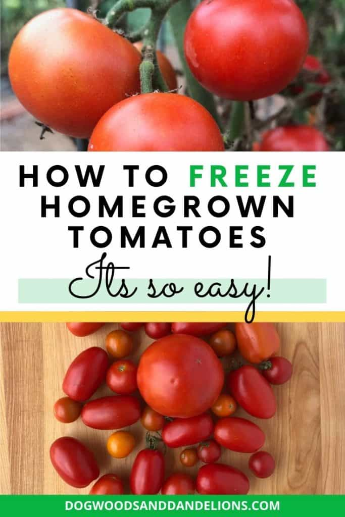 How to Freeze Tomatoes the easy way