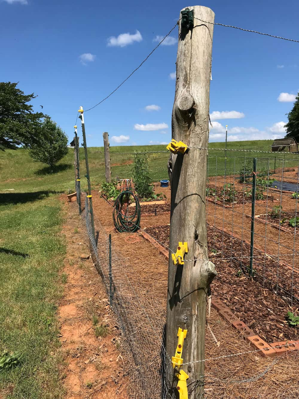Electric fence used to keep deer out of the garden.