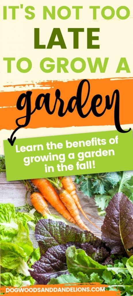 vegetables grown in a fall garden