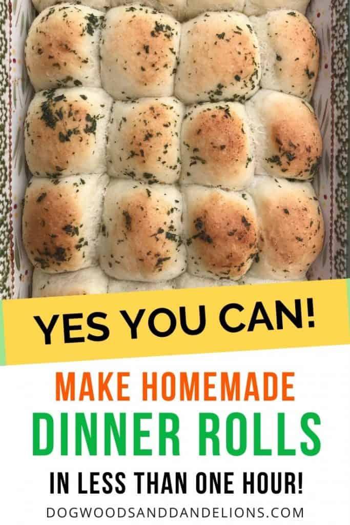 homemade dinner rolls in under an hour