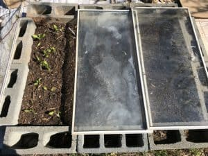 Homemade cold frame to get my garden started earlier.