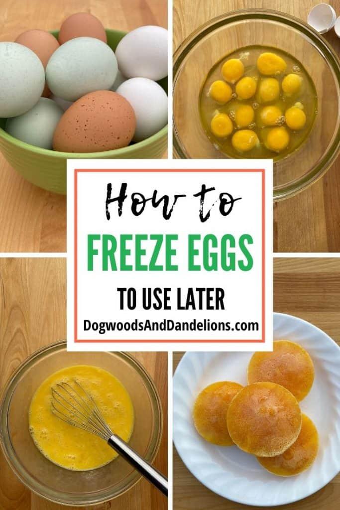 The steps to freeze a dozen eggs.