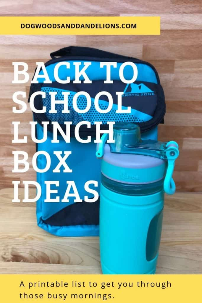 a lunch box and water bottle for packing school lunches