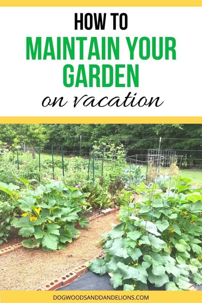 maintain a garden