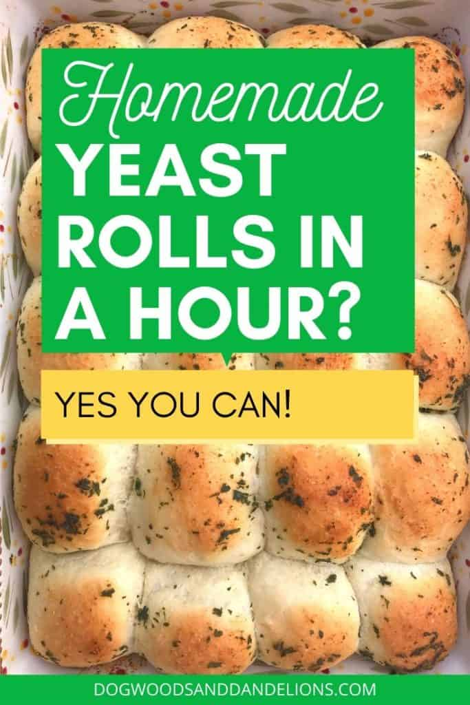 Easy yeast rolls in an hour