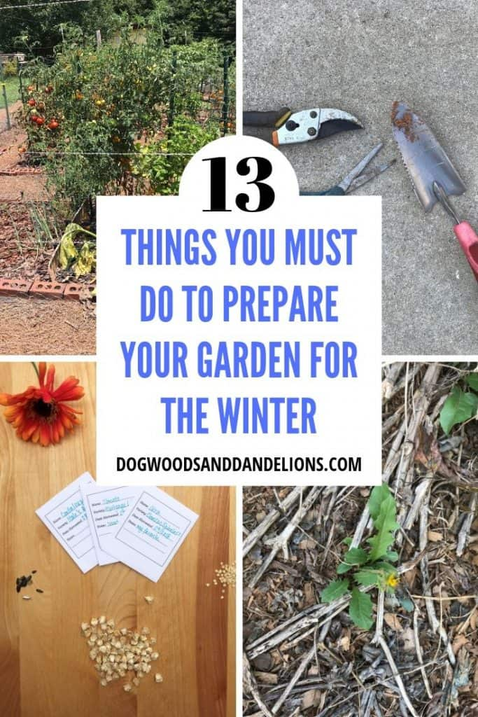 13 things you must do to prepare your garden for the winter