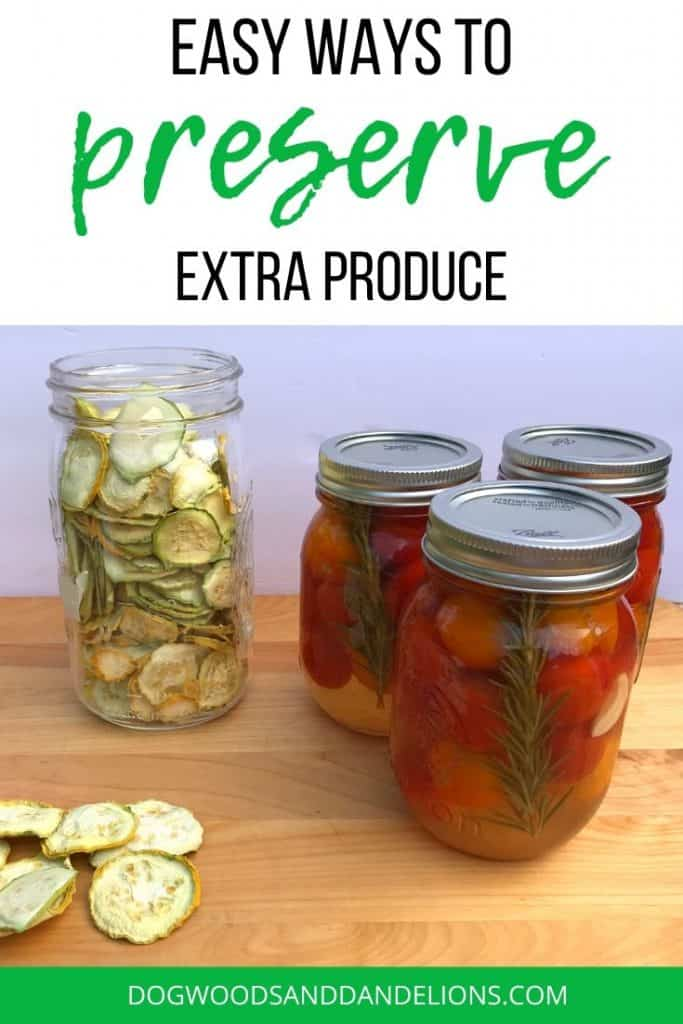 recipes for preserving zucchini, squash, and tomatoes