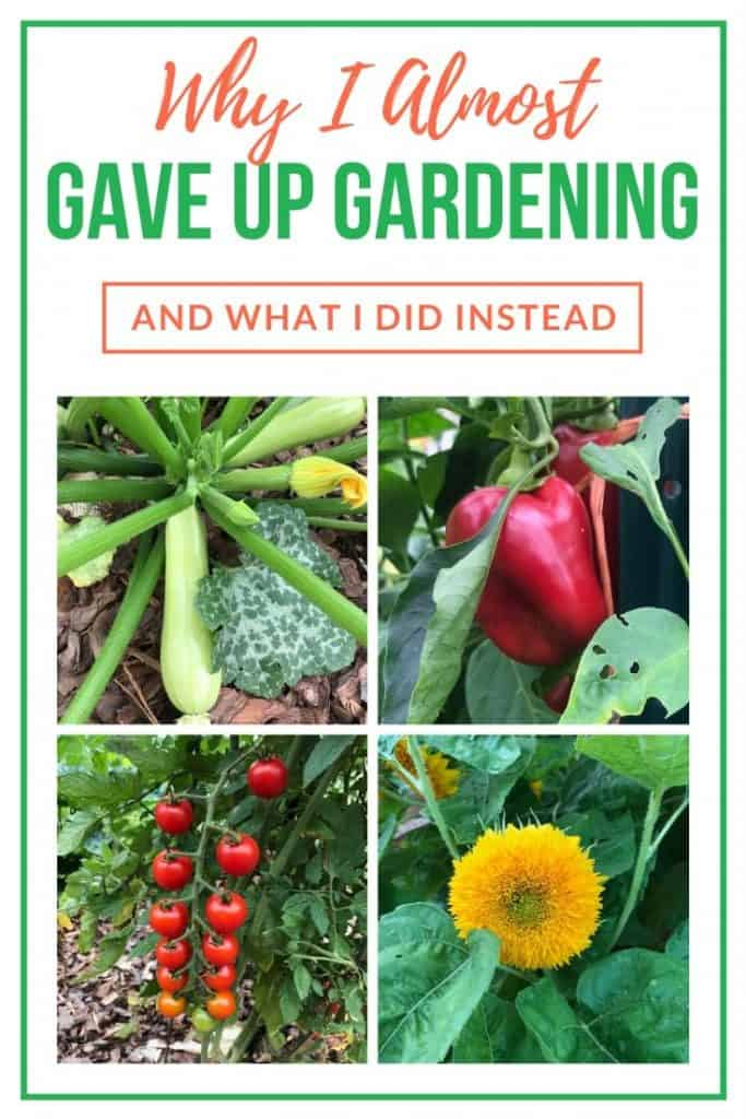 Why I almost quit growing a garden