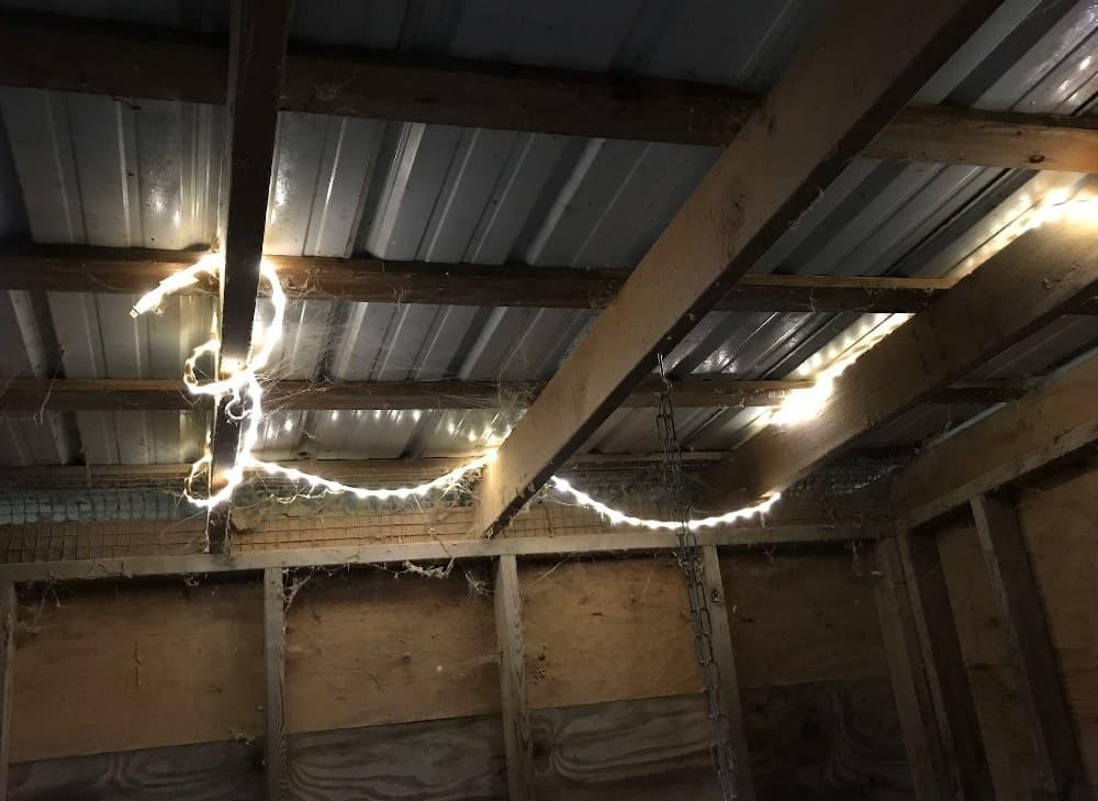 rope lights lighting a chicken coop