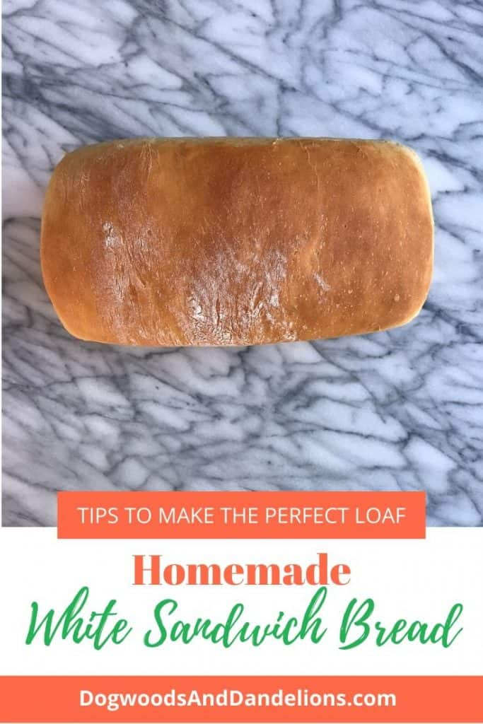 a loaf of homemade white sandwich bread
