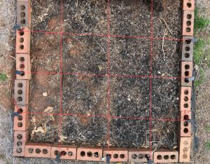 Simple grids for a square foot garden