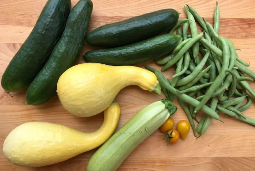 Cucumbers, squash, and beans all grow quickly.