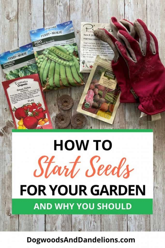 Seed packets and other seed starting items