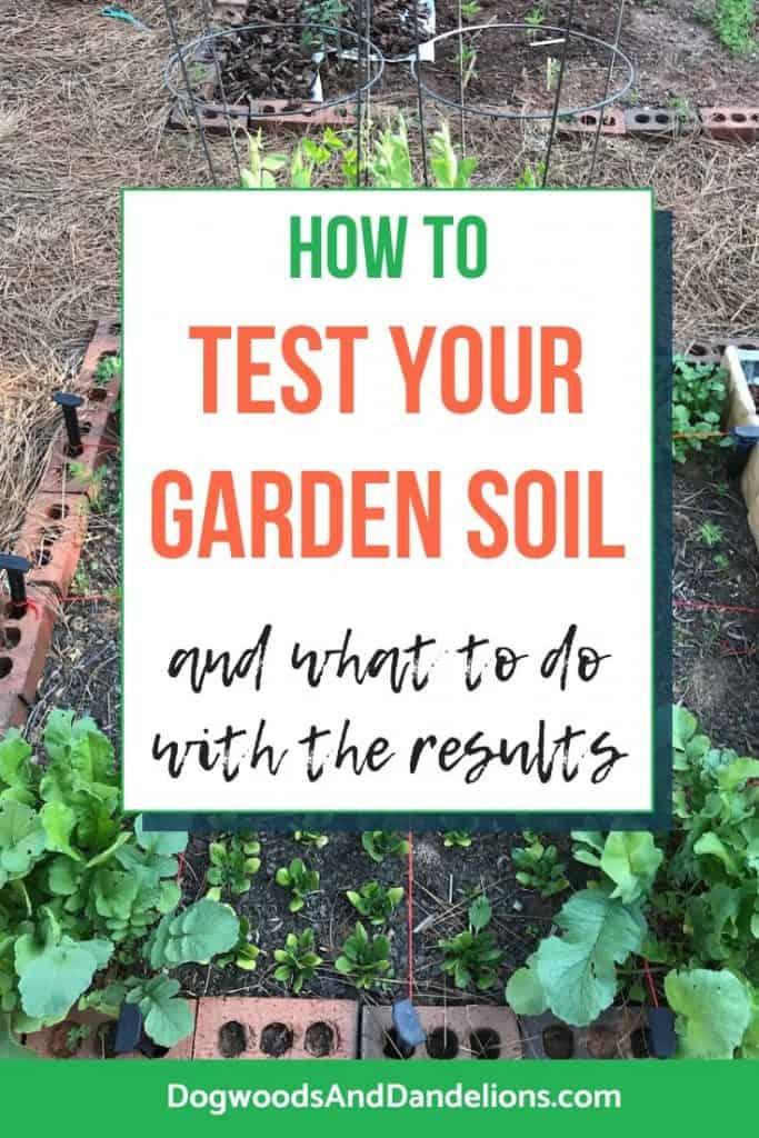 A garden needs a soil test.