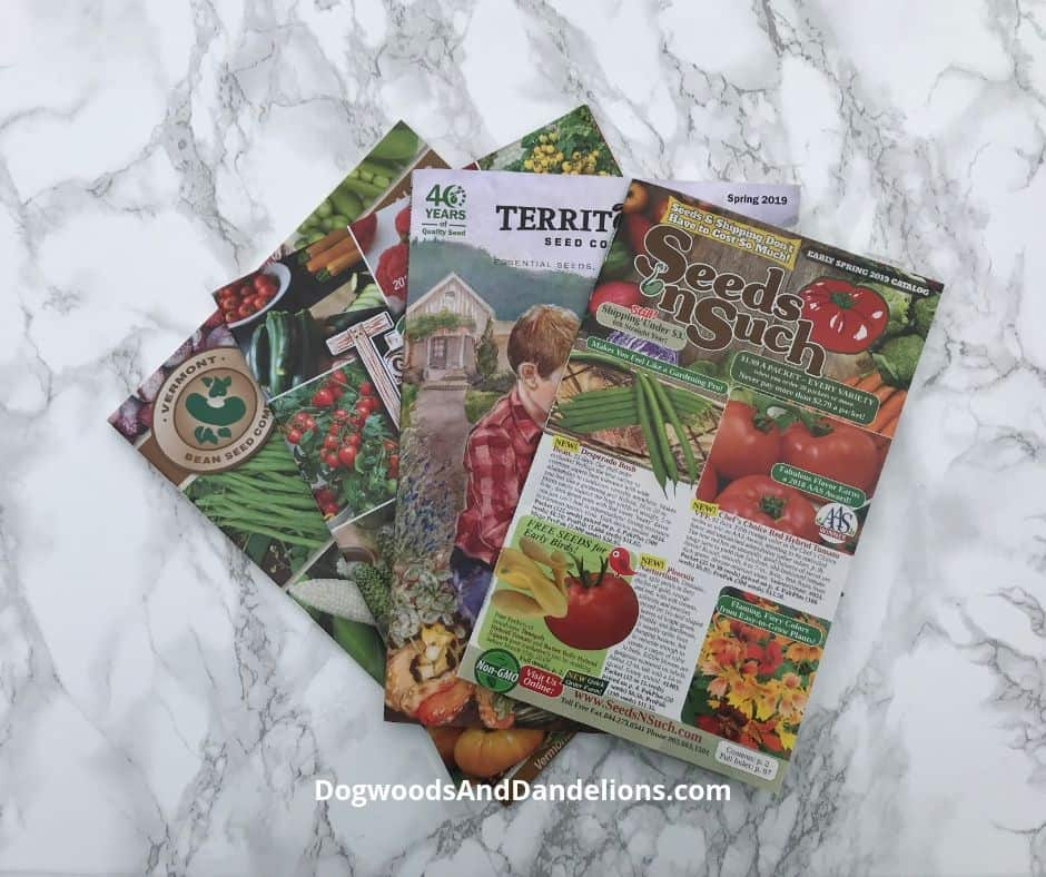 seed catalogs for spring