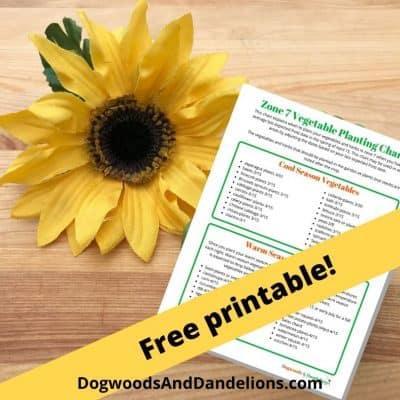 vegetable planting chart