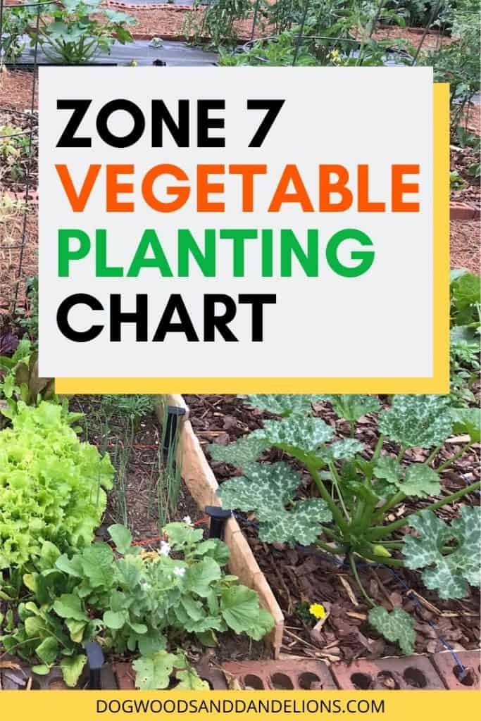 Vegetable Planting chart